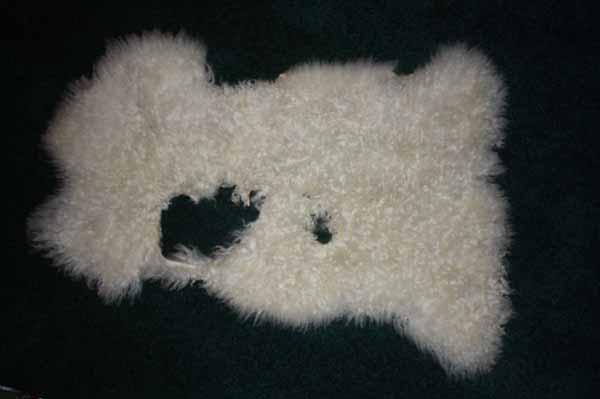 366-1 Teeswater lamb (craft pelt)