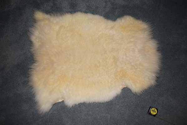2451-F Romney Lamb