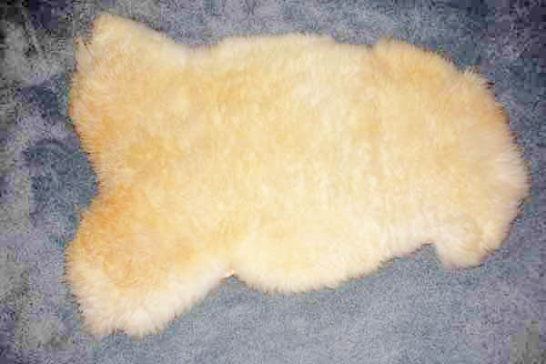2451-H Romney Lamb