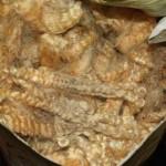 Teeswater Bulk fleece