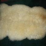 424 G- white Teeswater lamb