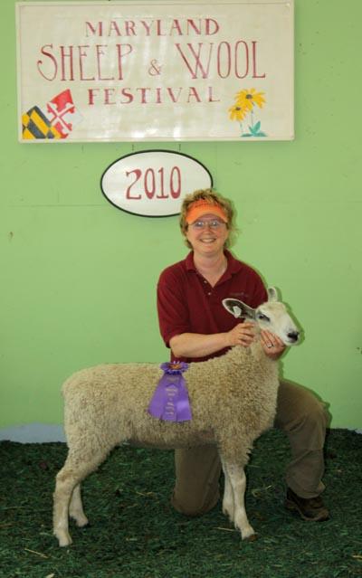Champion White Longwool Ewe